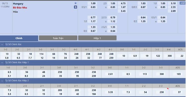 Tỷ lệ kèo Hungary vs Bồ Đào Nha hôm nay